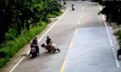 Oppslukt mopedist forbløffer etter trafikkuhell