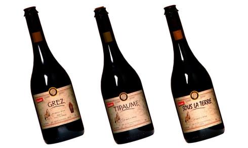 Slike viner har du neppe smakt fra Chile før