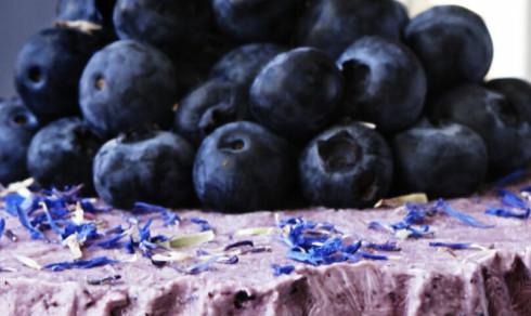 Frossen yoghurtkake med blåbær og pekannøtter
