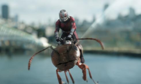 Filmanmeldelse «Ant-Man & The Wasp»: Min kvantepartner