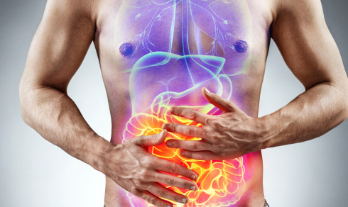 Quiz: Hvor mye kan du om kroppen din?