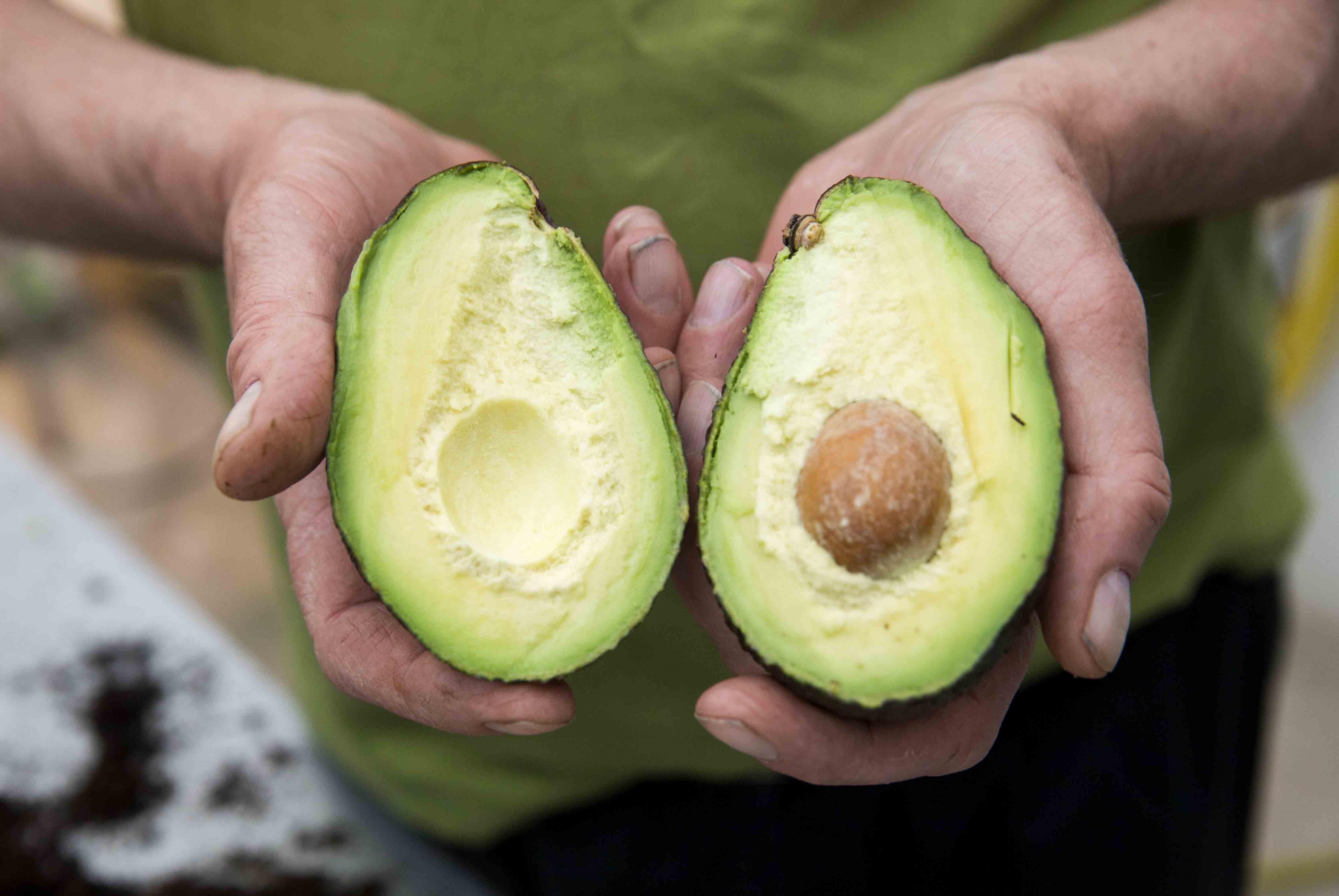 Dette Kan Skje Med Kroppen Din Om Du Spiser Avokado Hver Dag