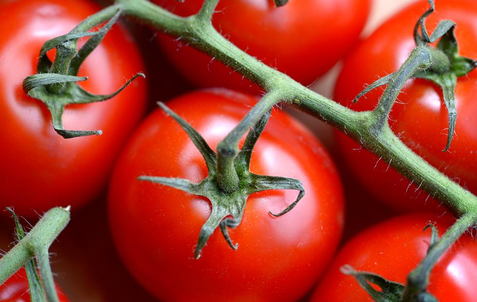 Derfor B 248 R Du Spise Massevis Av Tomat