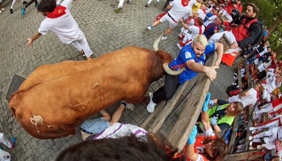 En av løperne ble fanget av oksens horn under okseløpet i Pamplona søndag 14. juli. Foto: NTB scanpix