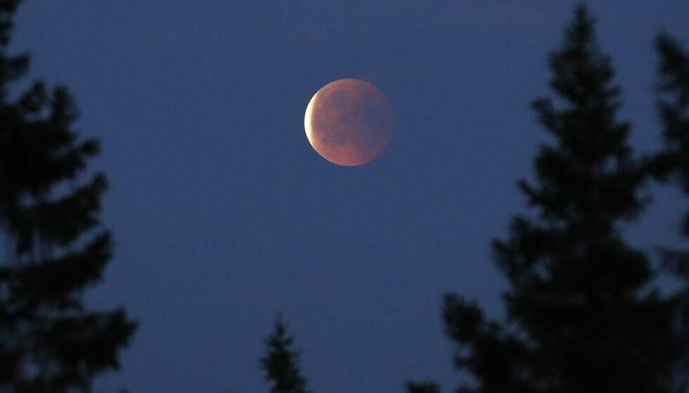 En delvis måneformørkelse vil være synlig på himmelen over store deler av landet tirsdag kveld. Bildet er tatt under måneformørkelsen i april i fjor, sett fra Eggedal i Buskerud. Foto: Erik Johansen / NTB scanpix