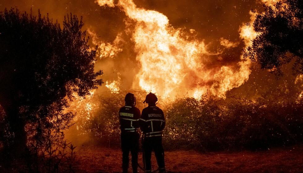 Portugisiske brannmannskaper kjempet søndag kveld mot flammene nær landsbyen Cardigos. Foto: AP / NTB scanpix
