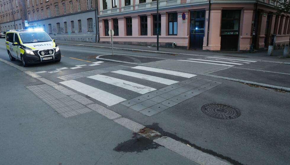 Påkjørselen skjedde like ved Botanisk hage i Oslo sentrum. Foto: Terje Bendiksby / NTB scanpix