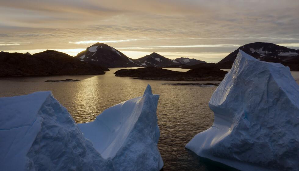 President Donald Trump har ikke slått fra seg tanken om å prøve å kjøpe Grønland fra Danmark. Foto: Felipe Dana / AP / NTB scanpix