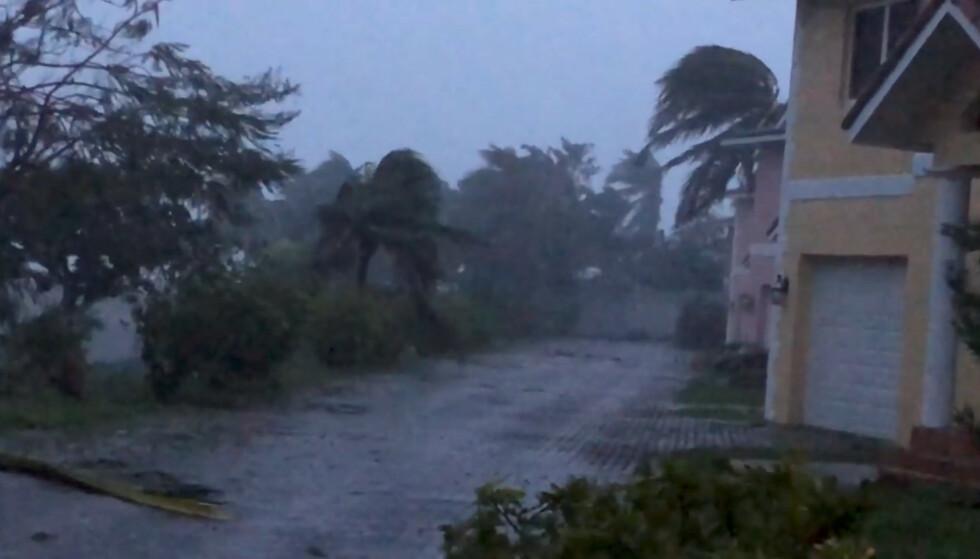 Kraftig vind i Freeport på Grand Bahama. (Foto: Lou Carroll/Reuters/NTB scanpix)