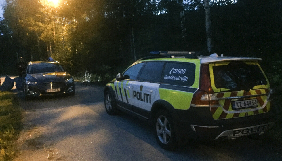 En mann i 30-årene er siktet for å ha drept en person på Vinstra i Gudbrandsdalen 15. august i år. Foto: Bjørn Berget / Dølen / NTB scanpix