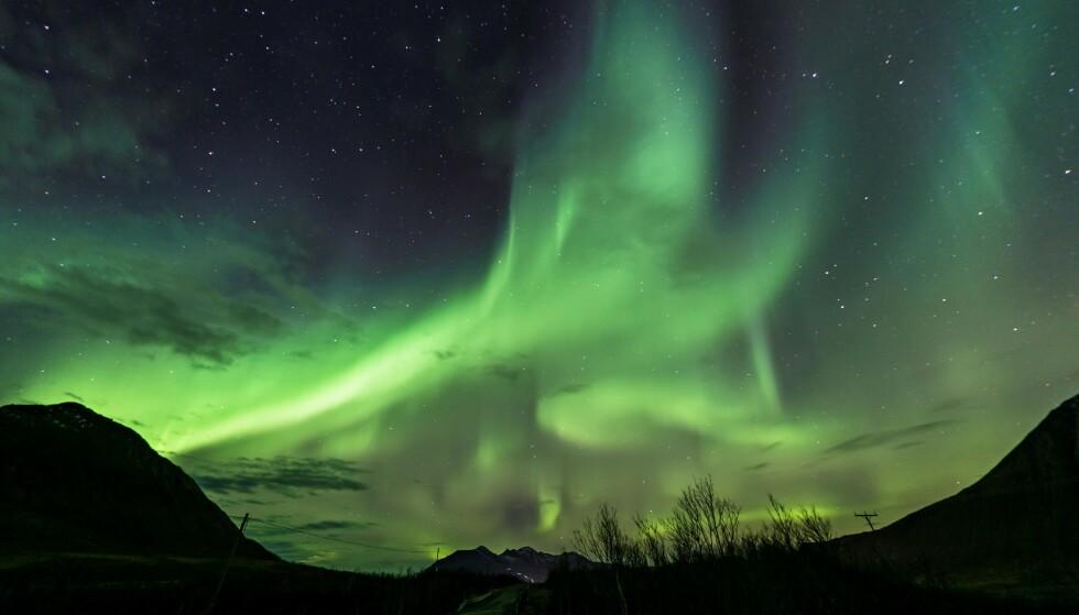 Du kan få varsel om når nordlyset er på vei. Foto: NTB scanpix.