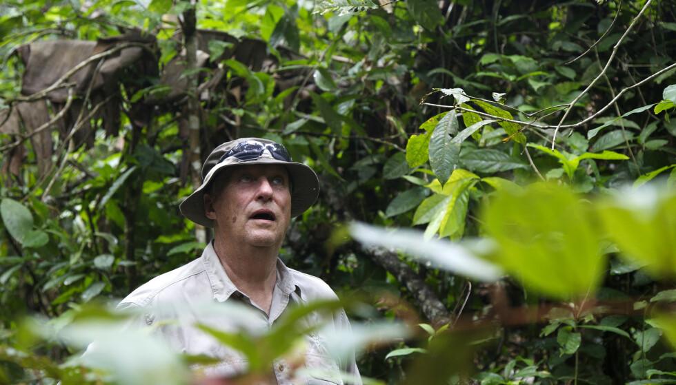 Kong Harald har også engasjert seg sterkt i bevaring av regnskogen i Brasil og besøkte i 2013 yanomami-indianerne dypt inne i Amazonas. Foto: ISA Brazil / Regnskogfondet / Det Kongelige Slott / NTB scanpix