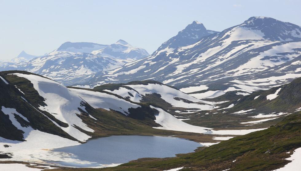 Mye snø på fjellet i juni. Her fra Synshorn ved Valdres, innover mot Jotunheimen. Foto: Ørn E. Borgen / NTB scanpix