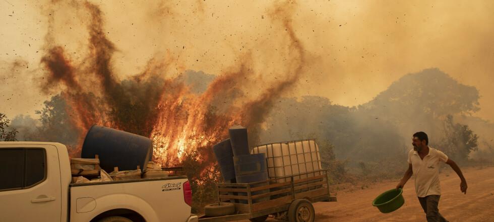 Brannkatastrofe i Brasil: - Verste jeg har sett