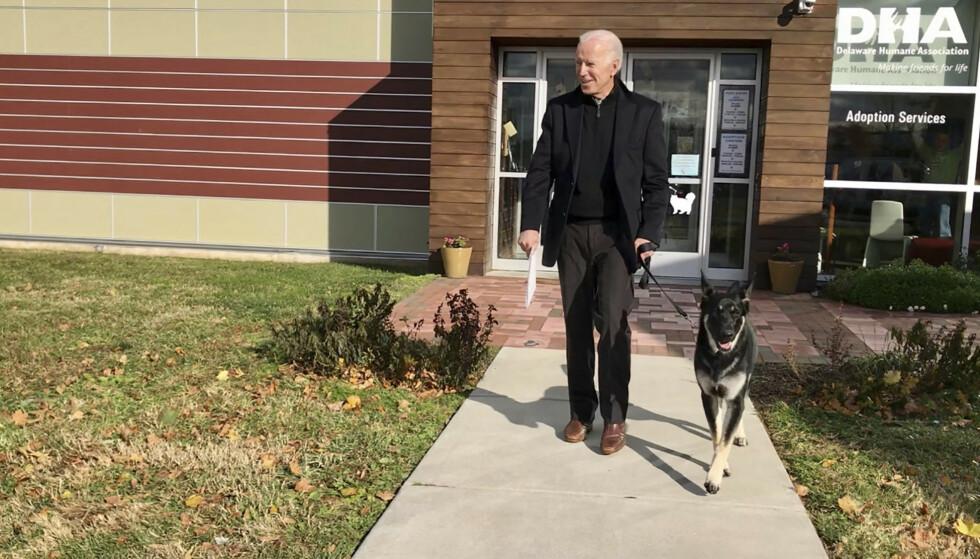 Påtroppende president Joe Biden adopterte hunden sin fra Delaware Humane Association i Wilmington. Foto: Stephanie Carter / AP / NTB