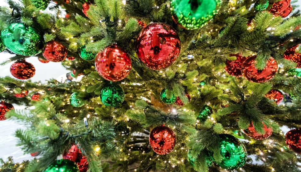 Juletre er en av årsakene til at mange nordmenn sliter med «juleallergi». Foto: Gorm Kallestad / NTB