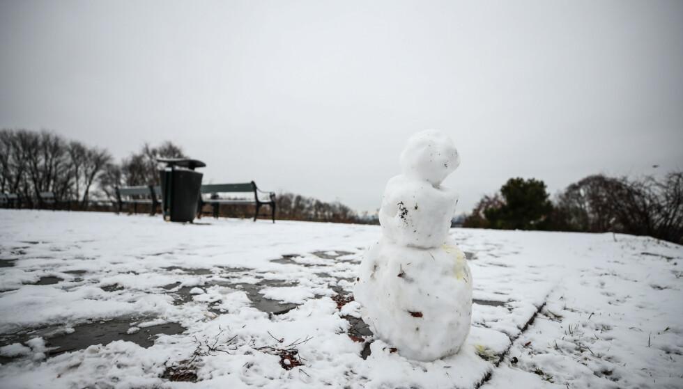 Vinteren, hvis man i det hele tatt egentlig har det som kan defineres som vinter, blir kortere og kortere i Norge, og snømengden mindre og mindre. Foto: Lise Åserud / NTB