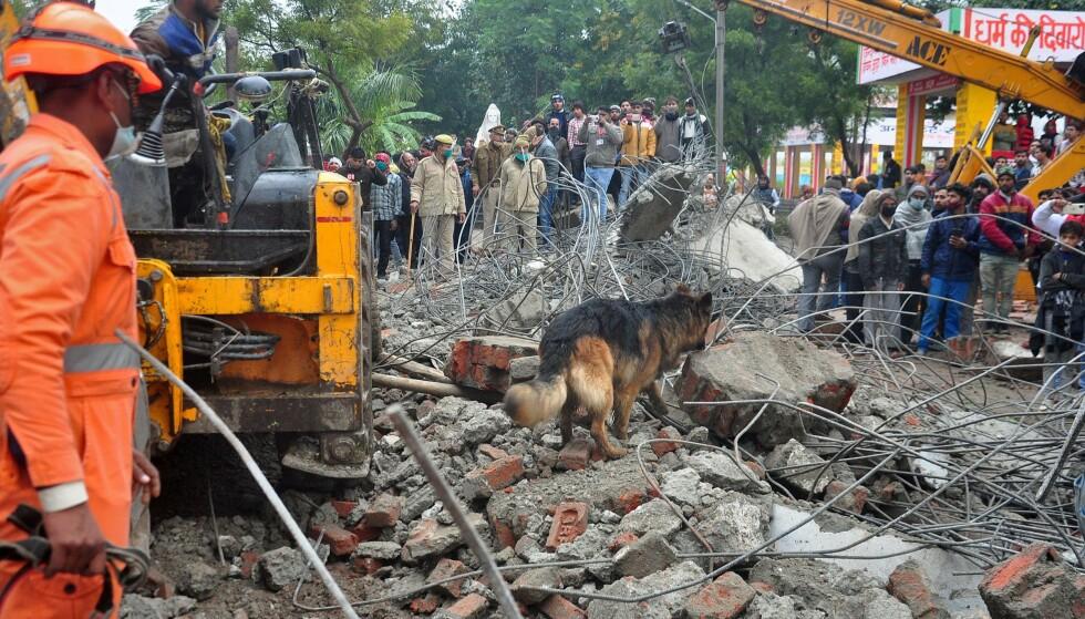 Redningsmannskap brukte hund for å undersøke stedet hvor et krematorium kollapeset etter regnvær i Ghaziabad i India. REUTERS / Stringer.