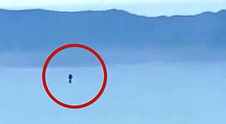 Image: Mystisk skikkelse etterforskes