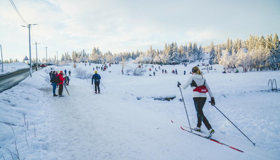 Skigåere ved Øvresetertjern ved Tryvann i Oslo for drøyt tre uker siden. Foto: Stian Lysberg Solum / NTB