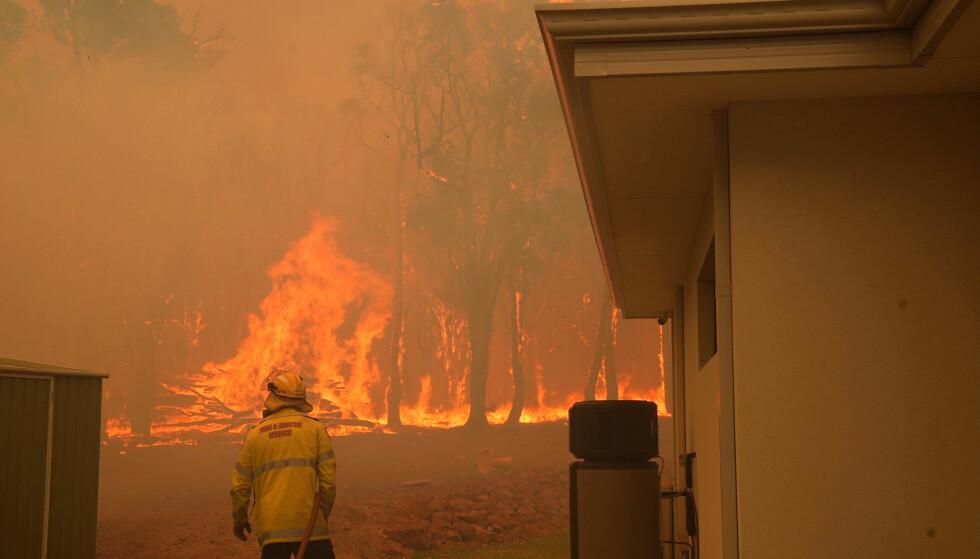 Over 80 hjem er ødelagt av brannene i Perth i Australia. Foto: Evan Collis / AP / NTB