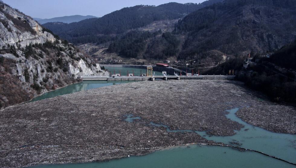 Enorme søppelmengder har hopet seg opp ved en dam i elva Drina nær byen Visegrad i Bosnia. Foto: AP / NTB