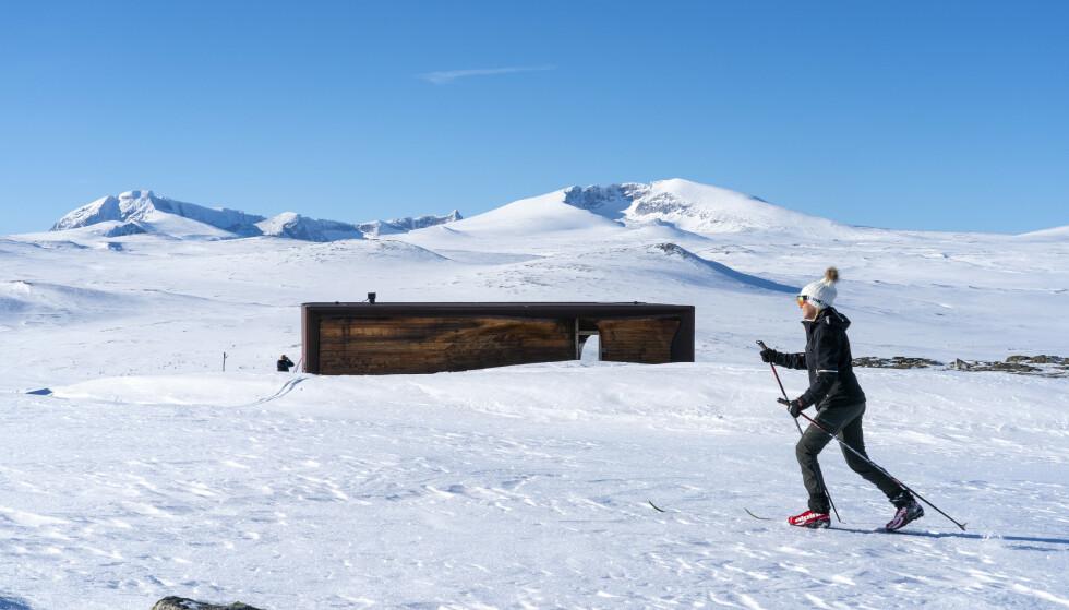 På Dovrefjell kan snøgrensa bevege seg rundt 1.500 meter. Her på Hjerkinn med Snøhetta i bakgrunnen tidligere i mars. Foto: Gorm Kallestad / NTB