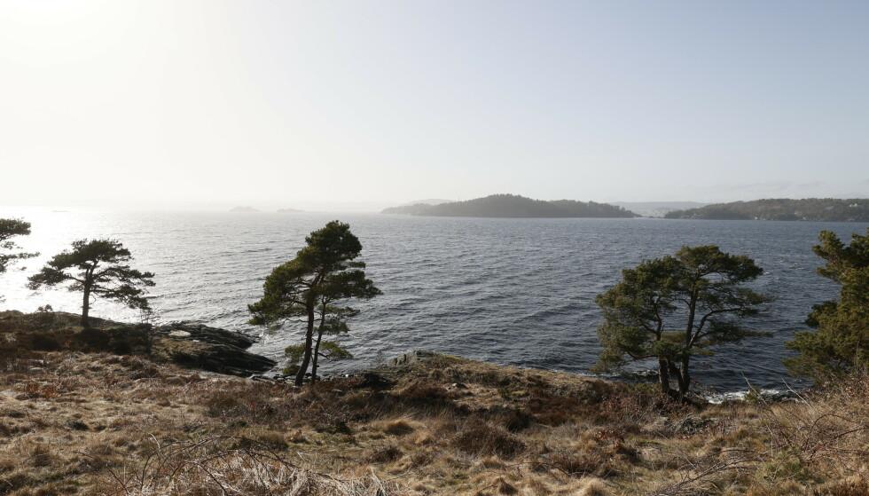Personen ble funnet mellom Dvergsnes, der bildet er tatt, og øya i bakgrunnen. Foto: Tor Erik Schrøder / NTB