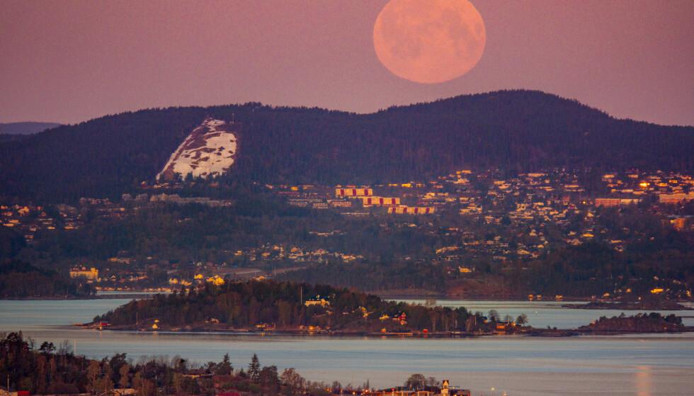 En supermåne på vei ned bak Asker og Nesodden tidlig tirsdag morgen. Foto: Heiko Junge / NTB
