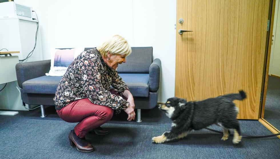 At det antakelig ikke er lov med hunder på Stortinget, gir Siv Jensen blaffen i. For tiden er det valpen Karma som opptar henne mest. Foto: Lise Åserud / NTB
