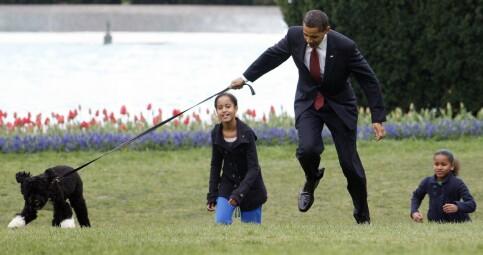 Image: Presidenthunden Bo er død