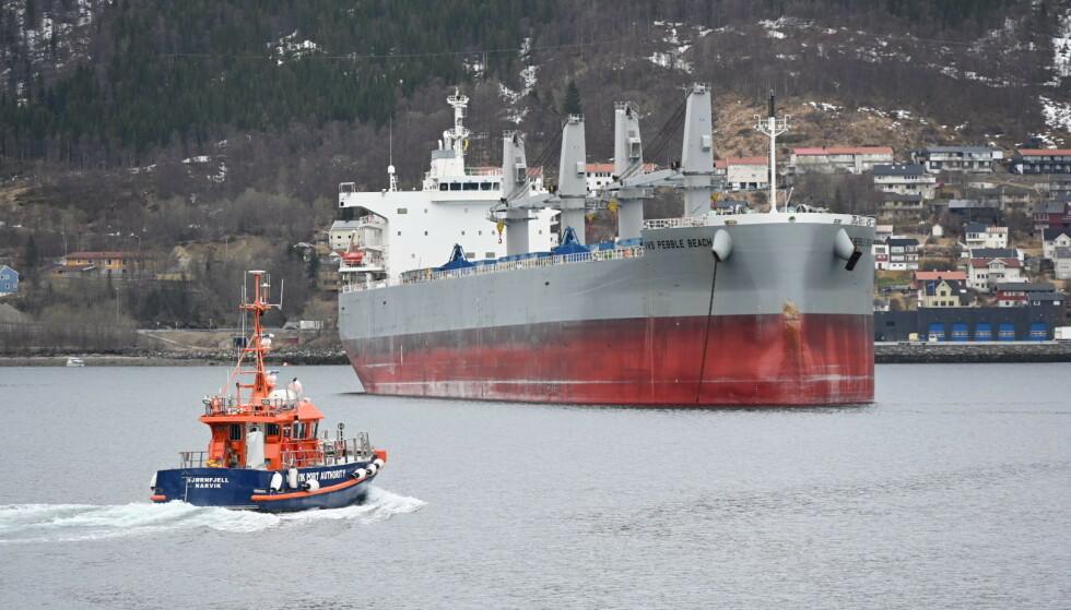 Malmskipet Pebble Bech, som er rammet av koronautbrudd, ligger til anker utenfor Narvik. En person er død etter utbruddet og tre er nå lagt inn på sykehus i byen. Foto: Jørn Indresand / Fremover / NTB