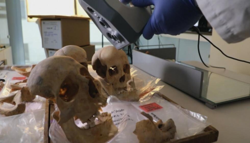 Forskere håper DNA fra knokler etter Christofer Columbus, sønnen Hernando og broren Diego skal gi et endelig svar på hvor den berømte og omstridte oppdageren kom fra. Foto: AP / NTB
