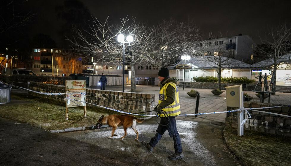 Åtte av ti drap med skytevåpen i Sverige, finner sted i kriminelle miljøer, viser en undersøkelse. Arkivfoto: Björn Larsson Rosvall / TT / NTB