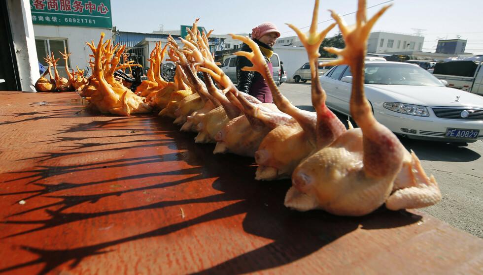 Kyllinger til salgs på et marked i Shaghai. (Foto: AP/NTB)