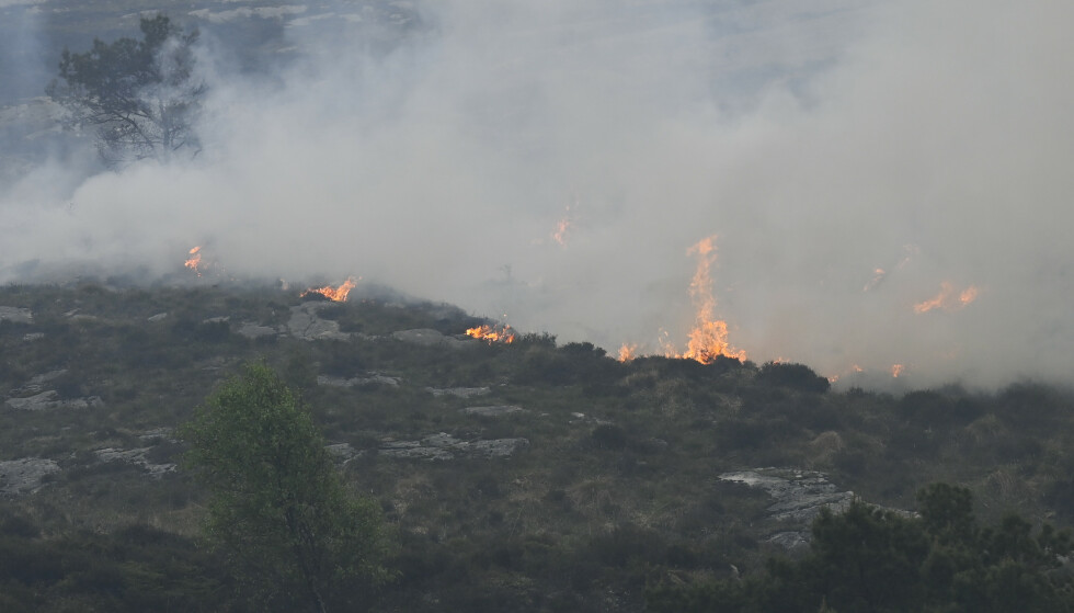 Bergen 20210603. Brannen i vegetasjonen på Sotra i Øygarden kommune har spredd seg. Et helt boligfelt er evakuert.Foto: Marit Hommedal / NTB