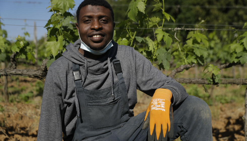 Salis Godje poserer foran vinrankene på vingården. Foto: Gregorio Borgia / AP / NTB