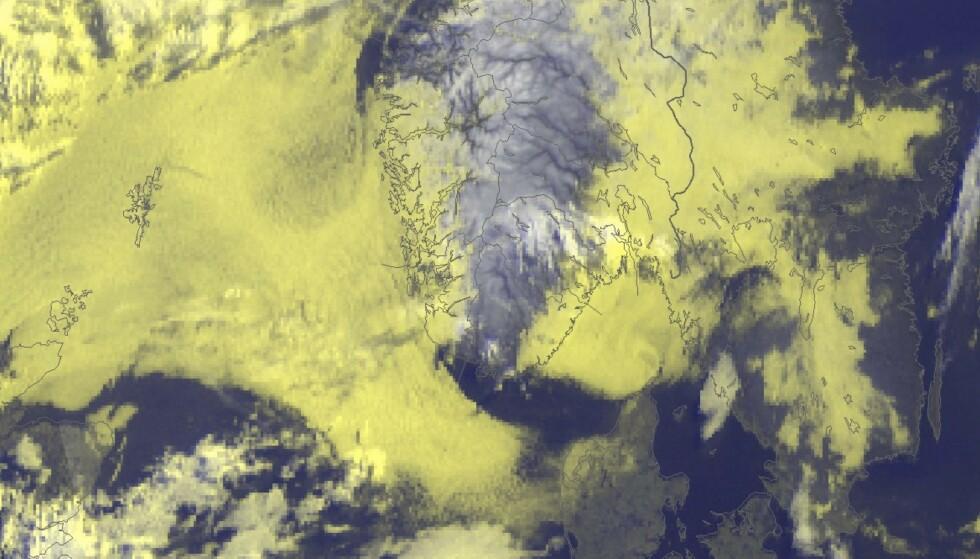 Skjermdump meteorologene på Twitter. Det gule på satellittbildet viser hvor tåka ligger mandag morgen.