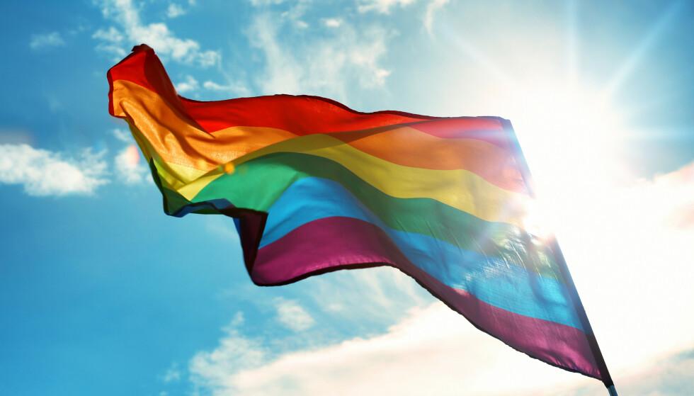 Tenåringer rev ned pride-flagg i Gjøvik