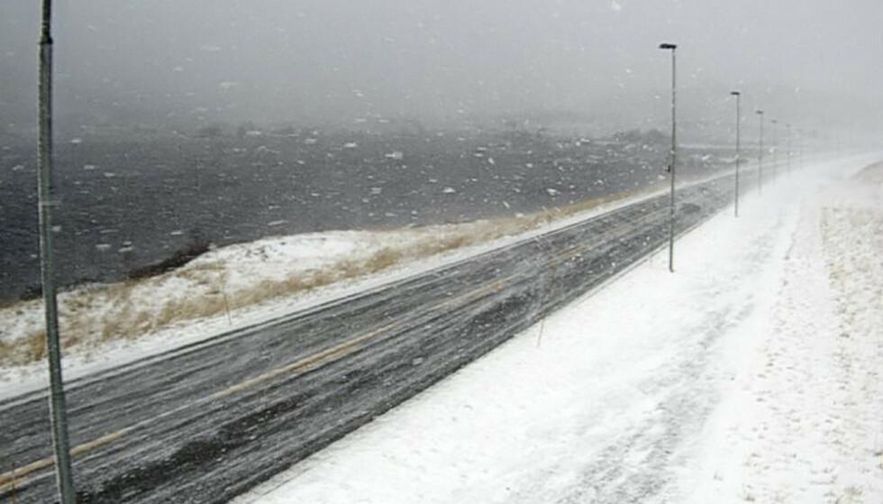 Fra webkamera på Filefjell, E16 ved Smedalen. Her kan det komme snø lørdag. Foto: Statens vegvesen / NTB