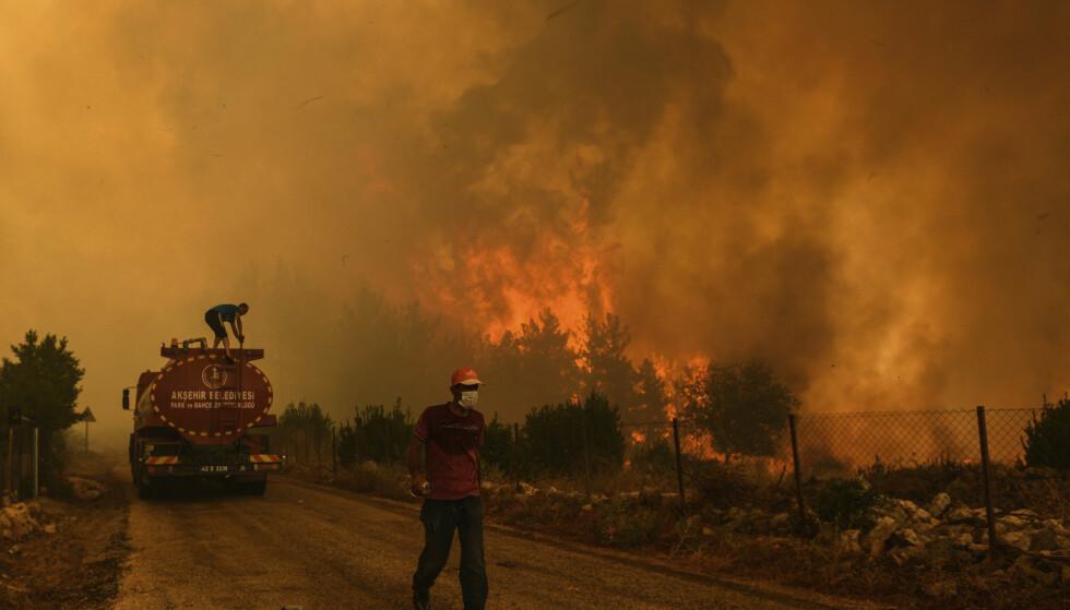 Brannvesenet kjemper mot flammene nær kysten ved Bodrum søndag. Store deler av brannene var fortsatt ikke under kontroll søndag kveld. Foto: Ismail Coskun/IHA via AP/NTB