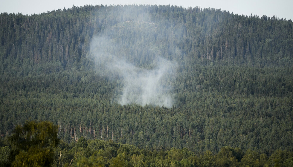 Røyk fra brannene langs Gjøvikbanen i Maridalen i juli. Foto: Fredrik Hagen / NTB