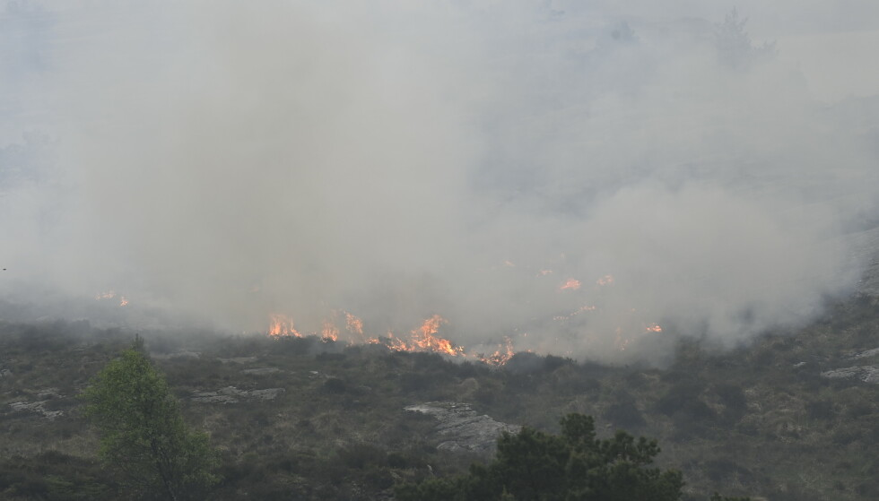 Fra skognrann på Sotra i Øygarden kommune. Et helt boligfelt er evakuert.Foto: Marit Hommedal / NTB
