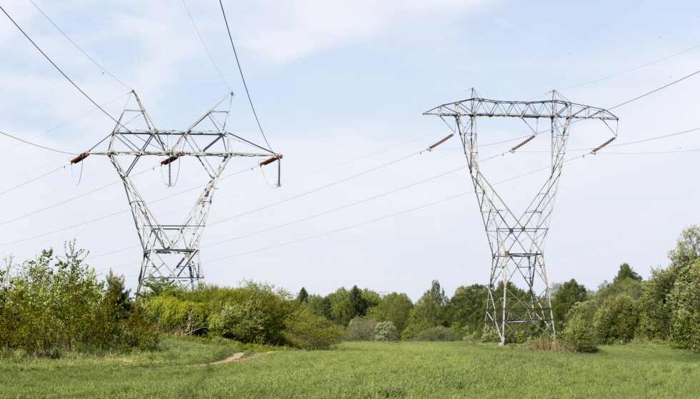 Rekordprisene på strøm får store konsekvenser for bønder og gartnere, som får langt større kostnadsvekst enn forutsatt i jordbruksoppgjøret. Foto: Terje Pedersen / NTB