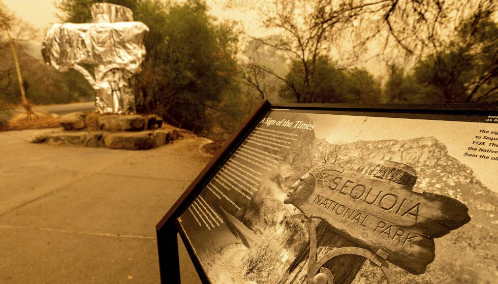 Et historisk «velkommen»-skilt er pakket inn i brannresistent folie i Sequoia National Park i California, som er hjem til verdens største sequoia-trær. Torsdag ble også flere av trærne pakket inn, for å beskytte dem fra flammene. Foto: Noah Berger / AP / NTB
