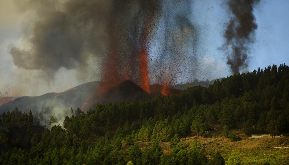 Det forrige vulkanutbruddet på La Palma i 1972 varte i mer enn tre uker. Det er ventet at det nye utbruddet også kan vare i flere uker eller måneder. Foto: Jonathan Rodriguez / AP / NTB