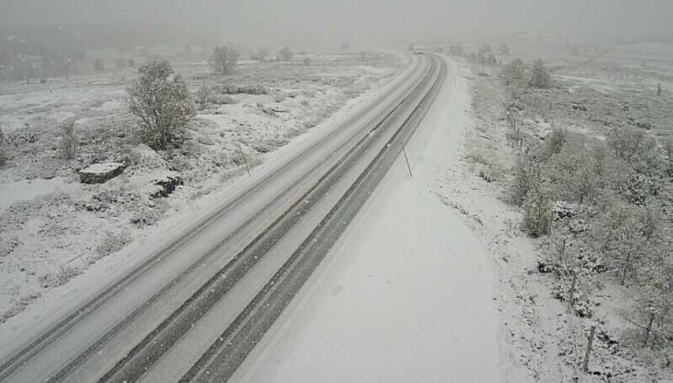 Det har kommet snø på Dovrefjell. Det fører til vanskelig kjøreforhold. Foto: Vegtrafikksentralen Øst.