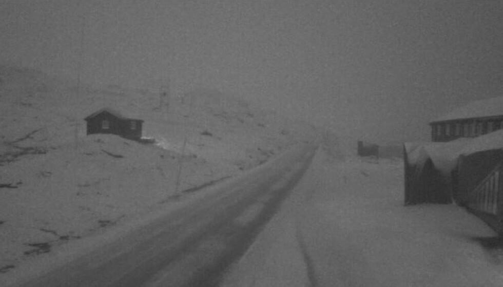 Snøen har kommet på fjellet i løpet av natten, her fra fylkesvei 55 ved Sognefjellshytta. Foto: Statens vegvesen / NTB