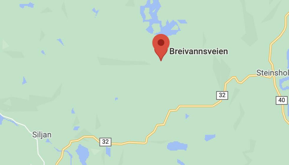 Skjermdump Google Maps