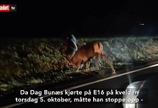 Image: Oppgjør langs E16